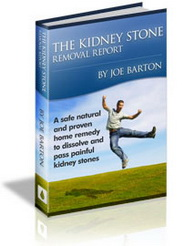 kidney stone removal report