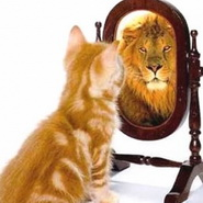self confidence creator program
