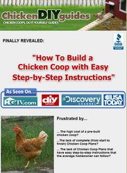 chicken diy guides review