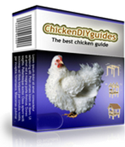 chicken diy guides